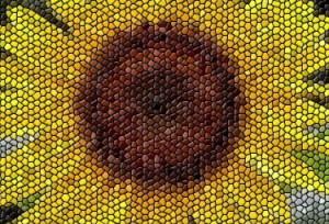 สร้างภาพ mosaic ออนไลน์