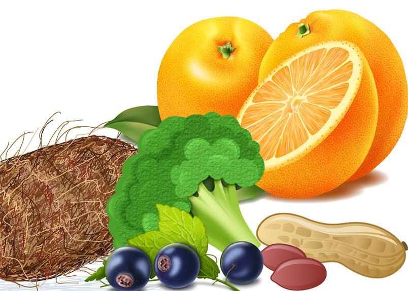 การ์ตูนผลไม้