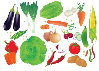 set-of-raw-vegetables