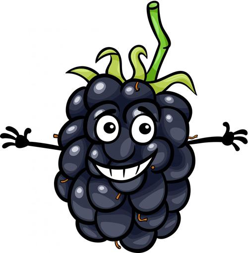 blackberry ผลไม้ต้านมะเร็ง