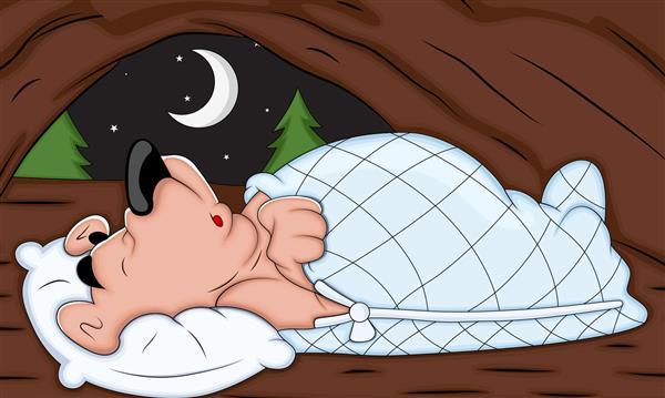 การนอนพักผ่อน